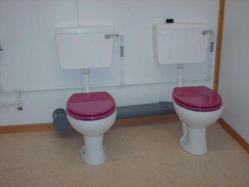fully-refurbished-ladys-toilet